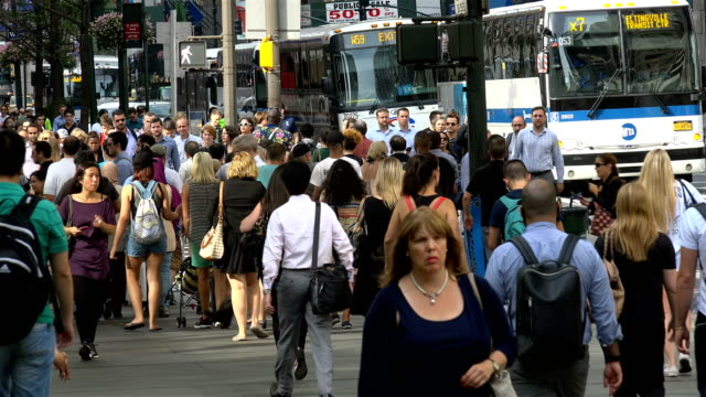 afternoon rush hour, people traffic, 5th ave, manhattan, new york city - bus stop stock videos & royalty-free footage