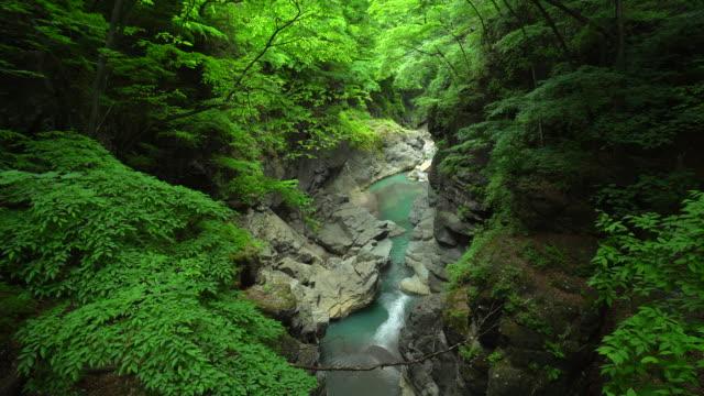 agatsuma dalen i gunma, japan - plusphoto bildbanksvideor och videomaterial från bakom kulisserna