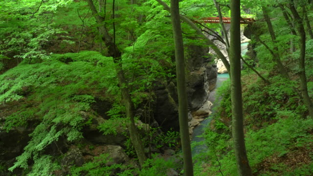agatsuma valley in gunma, japan - plusphoto stock videos & royalty-free footage