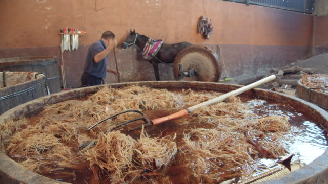 agave fermentation in mezcal homemade production process. wooden vat with mashed agave core on the foreground and man working with horse and a millstone on the background - millstone stock videos & royalty-free footage
