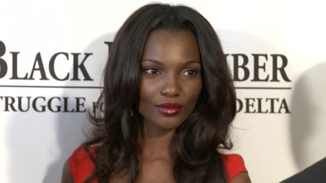 agbani darego at black november screening in washington dc at the john f kennedy center for performing arts on may 08 2012 in washington dc - john f. kennedy center for the performing arts stock videos & royalty-free footage