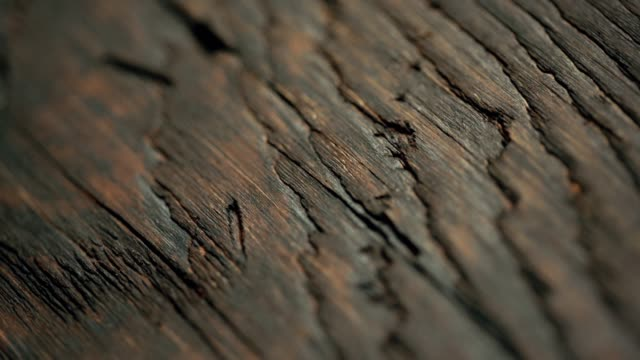aged wood material close-up. dolly shot - wood grain stock videos & royalty-free footage