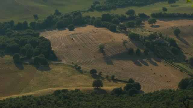 agricolture, in italy - marrone video stock e b–roll