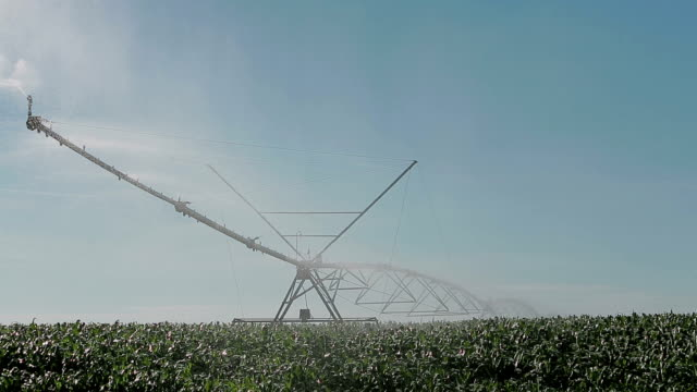 agricultura rega farm sprinkler - agricultura stock videos & royalty-free footage