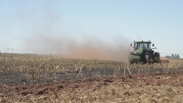 agricultural activities on ehlerskroon farm outside delmas mpumalanga in south africa on thursday september 13 2018 - mpumalanga province stock videos and b-roll footage