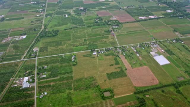 aerial landwirtschaftliches gebiet in lincoln, ontario - kanada stock-videos und b-roll-filmmaterial