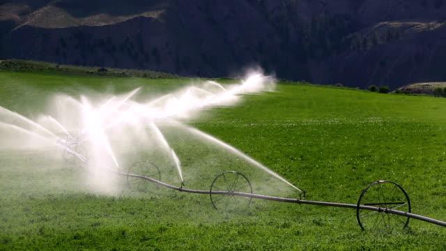 jordbruksutrustning sprinkler bevattning hjulet - vattna bildbanksvideor och videomaterial från bakom kulisserna