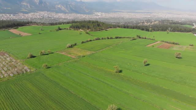 stockvideo's en b-roll-footage met landbouwgronden en cityscape van denizli, turkije - breed