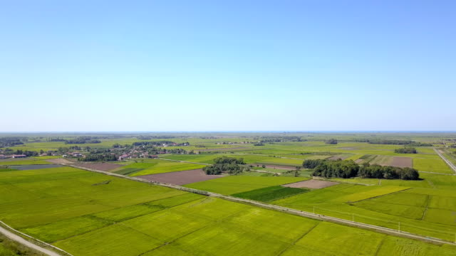 agricultural fields - raisin stock videos & royalty-free footage
