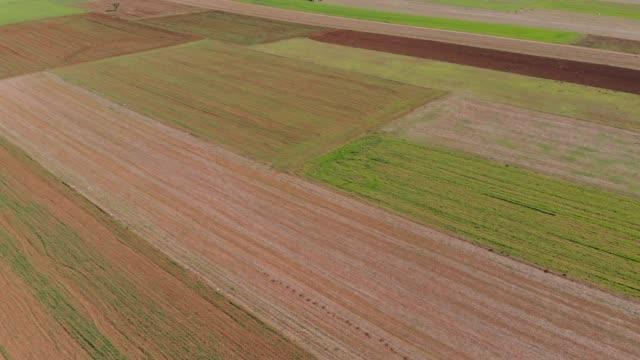 vídeos de stock, filmes e b-roll de de campos agrícolas - turquia