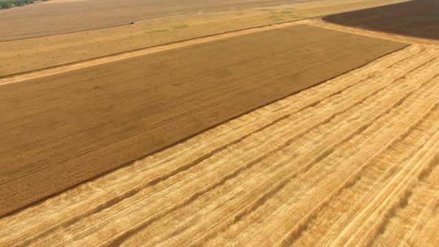 秋の航空: 農業庭園 - 梱包機点の映像素材/bロール
