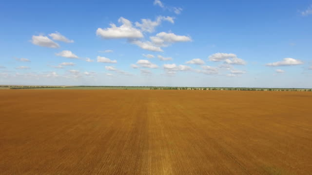 aerial: agricultural grounds on clear sunny day - plowed field stock videos and b-roll footage