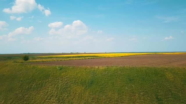 agricultural land - patchwork landscape stock videos and b-roll footage
