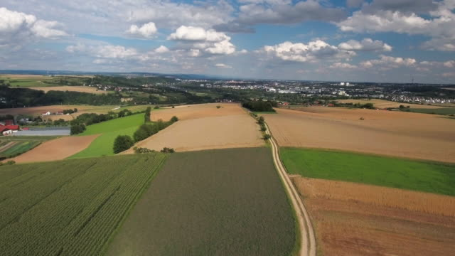 agricultural landscape near regensburg in bavaria - upper palatinate stock videos & royalty-free footage