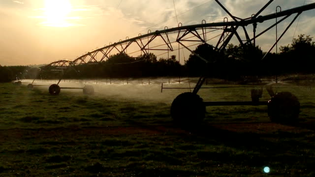 agricultural sprinkler - irrigation equipment stock videos & royalty-free footage