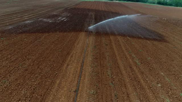 jordbruks sprinkler vattning ett fält - vattna bildbanksvideor och videomaterial från bakom kulisserna
