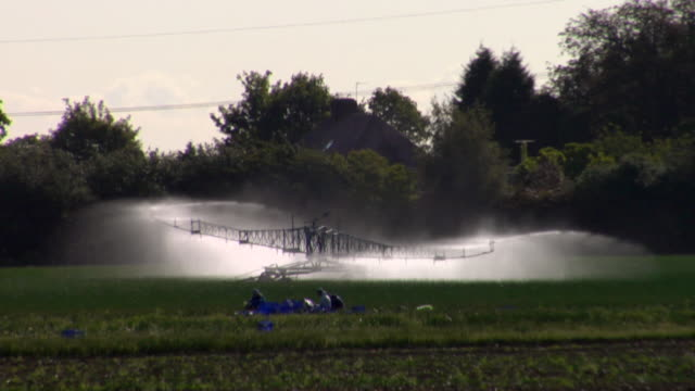 ws agricultural sprinkler watering field, rochester, kent, united kingdom - kent england stock videos & royalty-free footage