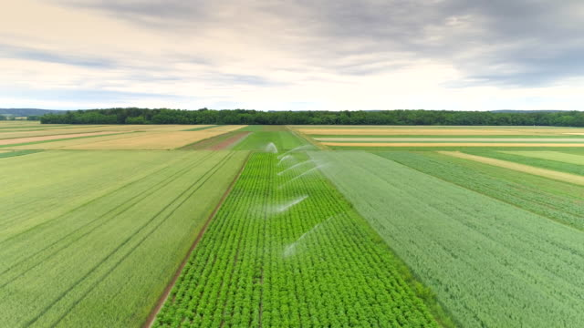 aerial agricultural sprinklers watering fields - irrigation equipment stock videos and b-roll footage