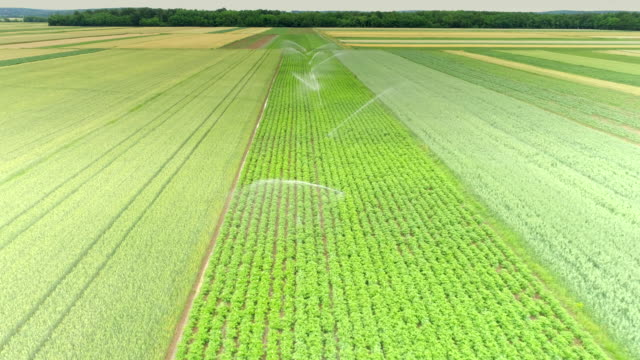 aerial agricultural sprinklers watering green plants - irrigation equipment stock videos and b-roll footage