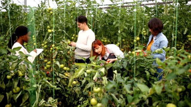 Agrarische Teamwork