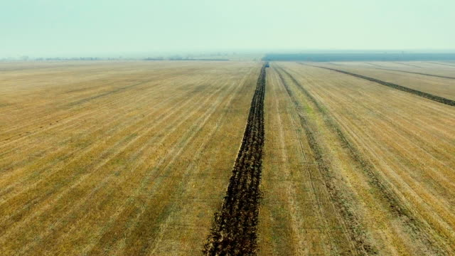 Agricultural work at autumn field. Tractor harrows ground