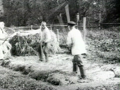 agricultural work in fields, picking potatoes, harvest, farmers threshing wheat audio/ russia - anno 1925 video stock e b–roll