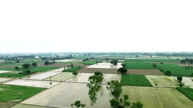 jordbruk 360 graders rotation - durra bildbanksvideor och videomaterial från bakom kulisserna