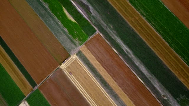 Agriculture and biodiversity for environmental protection