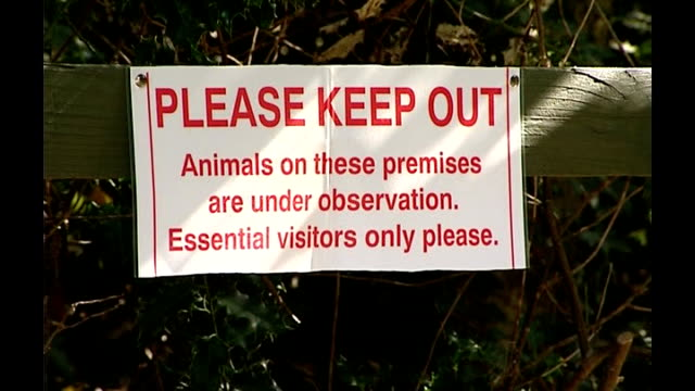 german livestock virus affects farm animals in britain t25090713 ipswich baylham ext sign on fence 'please keep out' - keep out sign stock videos & royalty-free footage