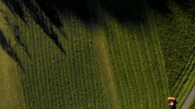 vídeos de stock, filmes e b-roll de fazenda campo de agricultura - pulverizando