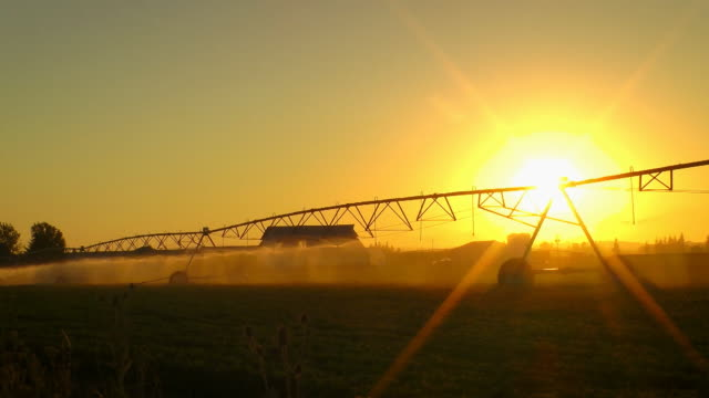 agriculture field sprinkler - salem oregon stock videos & royalty-free footage