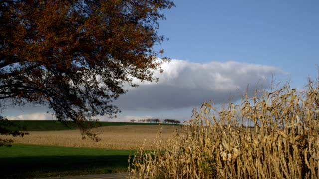 agriculture harvest landscape - lancaster county pennsylvania stock videos & royalty-free footage