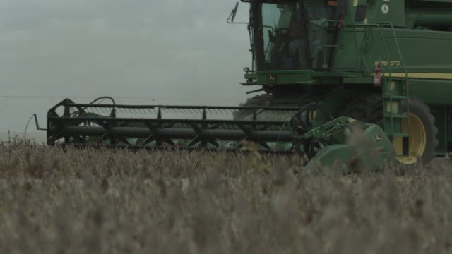 agriculture harvester machine on soy filed - klinge stock-videos und b-roll-filmmaterial