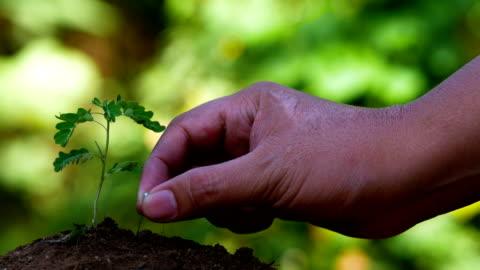 vídeos y material grabado en eventos de stock de tecnología de immerseive de agricultura para medir la calidad del suelo - intelligence