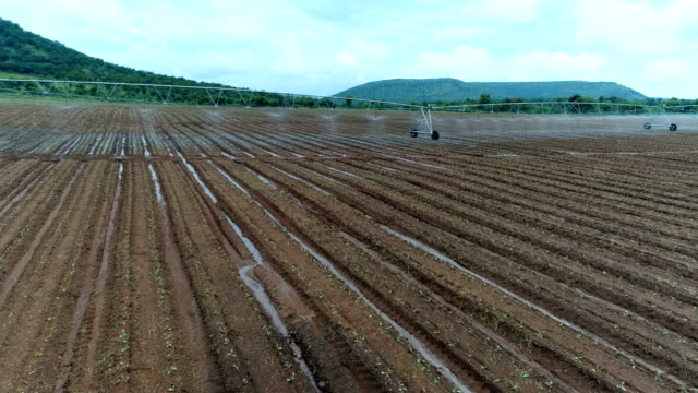 agriculture in south africa - irrigation equipment stock videos & royalty-free footage