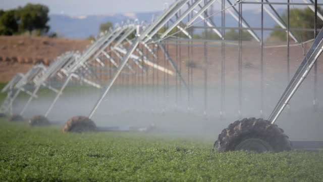 agriculture - industrial irrigation system - irrigation equipment stock videos & royalty-free footage