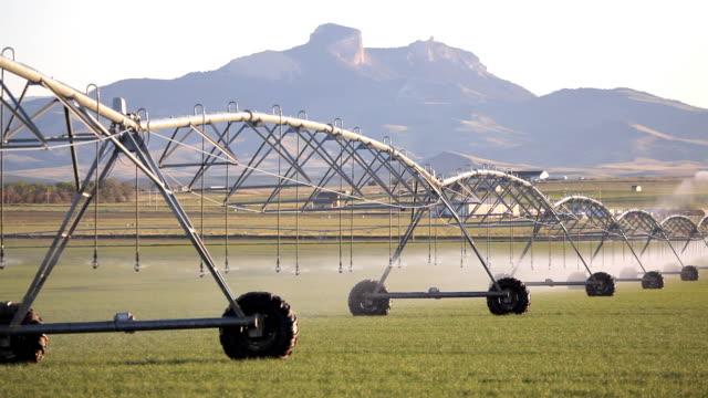agriculture - irrigation sprinkler landscape - irrigation equipment stock videos & royalty-free footage