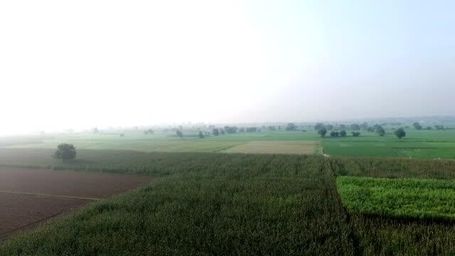 Landwirtschaft-Land-360-Grad-Ansicht