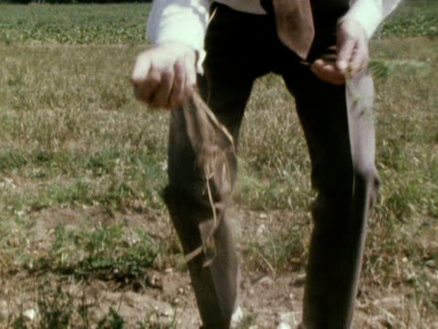 agriculture minister, fred peart picks up a handful of dry soil and plant roots from a field, during the 1976 drought crisis. - landwirtschaftsminister stock-videos und b-roll-filmmaterial