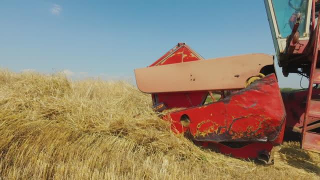 vídeos y material grabado en eventos de stock de trabajos de agricultura: campo de verano en italia - oficio agrícola
