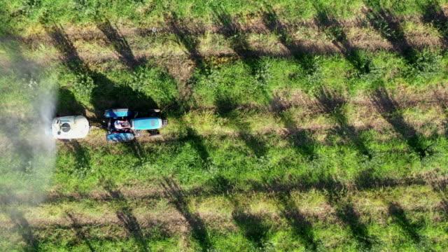 landwirtschaftliches sprühen eines apfelfeldes - obstgarten stock-videos und b-roll-filmmaterial