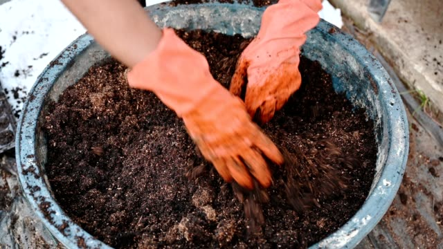 agriculturist hand shoveling compost from manure, plant, and soil in bucket - digging stock videos & royalty-free footage