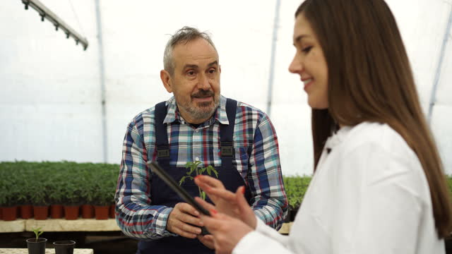 agronomist analyzes seedlings with a farmer - technician stock videos & royalty-free footage