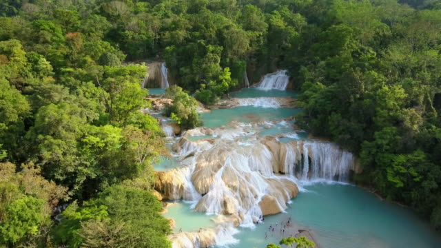 agua azul waterfalls in chiapas mexico - rainforest stock videos & royalty-free footage