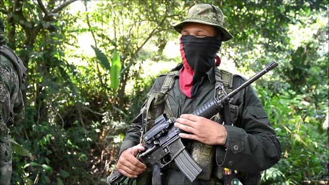 ahead of a peace deal that could see the end to a half century old civil conflict the national liberation army rebels in colombia the country's last... - drug trafficking stock videos & royalty-free footage