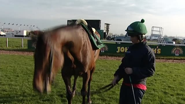 aintree ladies day 2018 r13041204 / **walsh interview partly overlaid sot** various of katie walsh standing next to horse - hooved animal stock videos and b-roll footage