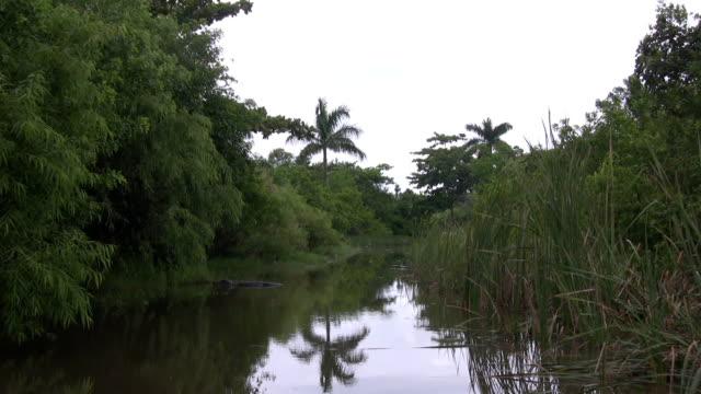 Air Boot in die Everglades