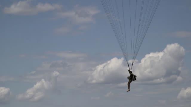 vídeos de stock, filmes e b-roll de air force c-130 hercules and romanian air force c-130 hercules deliver romanian paratroopers at boboc air base, romania during exercise carpathian... - invertebrado