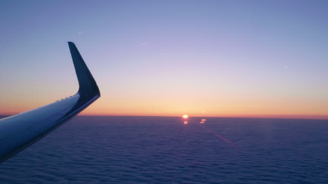 Air Plane Wing at Dawn