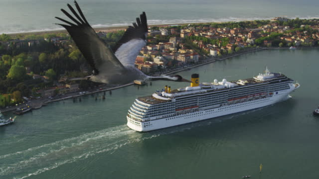 Air to Air MS flying with Common Crane over Venice lagoon with cruise ship and coastline in background